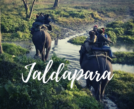 jaldapara national park tour package