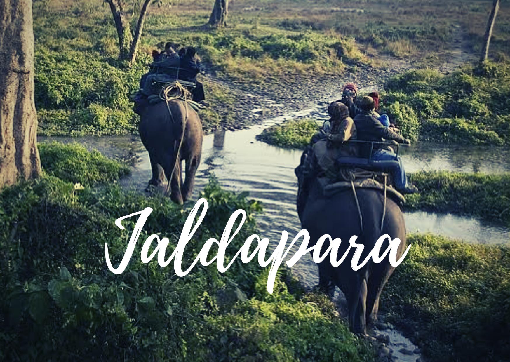 jaldapara national park tour package