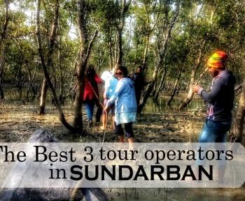 Sundarban tour operators