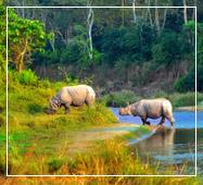 chitwan national park tours