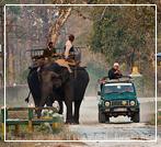 dooars jeep safari