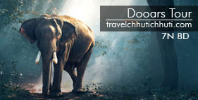 dooars tour package from kolkata
