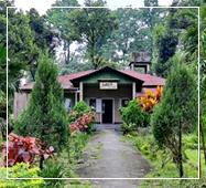 gorumara jungle resort