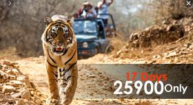 madhya pradesh package tour