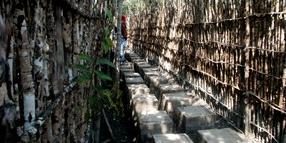 Sundarban Burirdabri Watch Tower