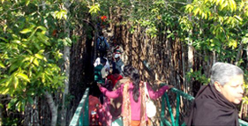 sundarban core area
