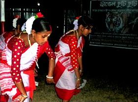sundarban tour photos