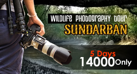 Sundarban Photography Tour
