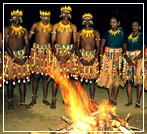 tribal dance dooars